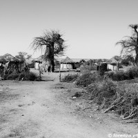 African Life a (7)