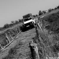 African Life b (3)