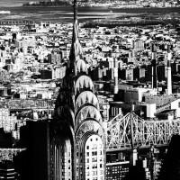 NY 036
